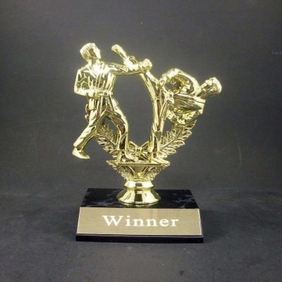 Karate or Martial Arts Trophy Award