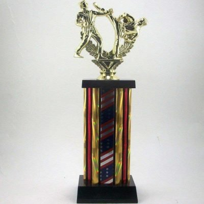 Karate Martial Arts Trophy Award