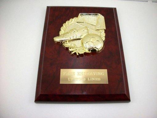 Soccer Plaque Trophy